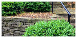 Landscapers in Lancaster, PA